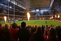 Wales contra Argentina Foto de Stock Royalty Free