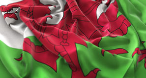 Wales Flag Ruffled Beautifully Waving Macro Close-Up Shot. Studio Stock Images