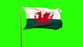 Wales flag waving in the wind. Green screen, alpha stock video