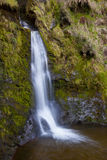 Wales - Pistyll Rhaeadr Waterfall - United Kingdom. Pistyll Rhaeadr Waterfall in Powys in Wales. Formed by the Afon Disgynfa's falling, in three stages, over a Royalty Free Stock Photos