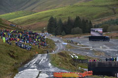 Wales Rally GB 2015 SS Sweet Lamb Royalty Free Stock Image