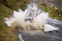 Wales Rally GB 2015 SS Sweet Lamb Royalty Free Stock Photography