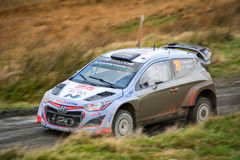 Wales Rally GB 2015 SS Sweet Lamb. Hyundai i20 WRC Driver : Thierry Neuville Co-Driver : Nicolas Gilsoul stock images