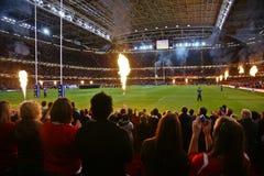 Wales vs argentina Royalty Free Stock Photo