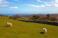 Walesisk bygd arkivbild
