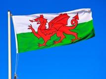 Walesisk flagga Royaltyfri Bild