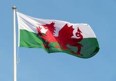 Walesisk flagga som blåser i vinden Arkivfoto