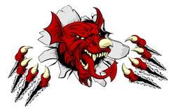 Walesiska Dragon Clawing Through Arkivbilder