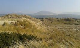 Walesiskt landskap för sanddyn Arkivfoton