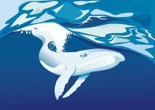 Walfliege im Meer Stockfotografie
