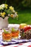 walić ziołową herbatę plenerowej Zdjęcia Stock