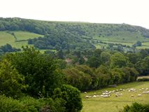 Walijscy wzgórza Zdjęcia Royalty Free