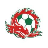 Walijska smok piłki nożnej piłka ilustracja wektor