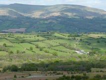 Walijska wieś Zdjęcie Stock