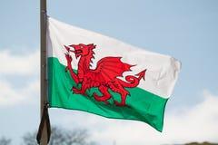 Walijski flaga państowowa latanie w wiatrze przeciw niebieskiemu niebu Zdjęcie Royalty Free