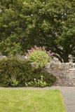 Waliser-Garten Stockbild