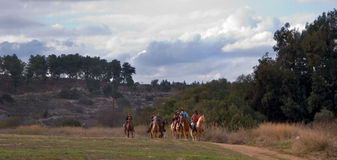 On walk. Group of horsemen on walk in the day off Royalty Free Stock Photography