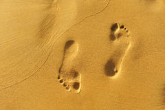 Walk along the beach, footprints in the golden sand Stock Images