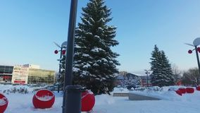 Walk around the pine tree at city covered with snow. Trees and buildings covered by snow at winter day. stock video