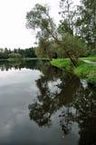Walk around the pond Stock Photos