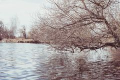 Walk around the Southern Bug River, Ukraine stock photo