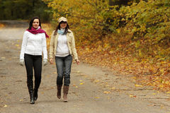 Walk in the autum. Two girlfriends goes for a walk in the autumnal park Stock Images