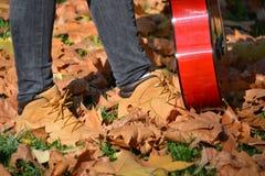 Walk through autumn leaves Royalty Free Stock Photo