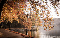 A walk in autumn next to a lake Stock Images