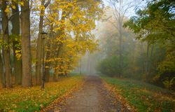 Walk in the autumn park Royalty Free Stock Image
