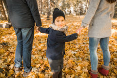 Walk autumn park Stock Photography
