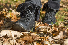 Walk in the autumn park. Royalty Free Stock Images