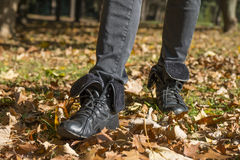 Walk in the autumn park. Royalty Free Stock Photo