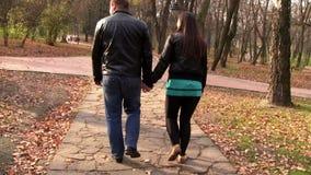 Walk autumn park lovers stock footage