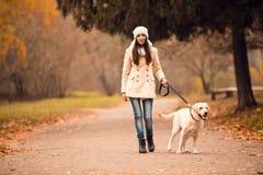 Walk in the autumn park Stock Photos