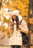 Walk in the autumn park Royalty Free Stock Photo