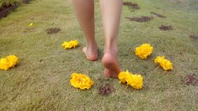 Walk barefoot on grass. Woman walking in the park barefoot on grass and yellow flowers Stock Photos