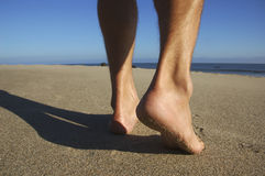 Walk on beach royalty free stock photo