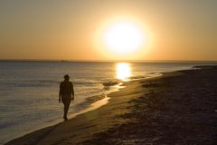 Walk on a beach. A girl walking on a beach during beautiful sunset Royalty Free Stock Photos