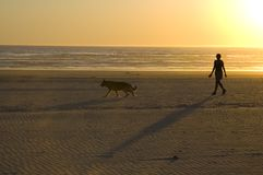 Walk On The Beach. Person and dog in shadows walking on a sunset beach Stock Photography