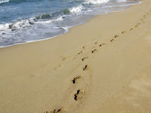 A Walk On The Beach Stock Photography