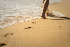 Walk on the Beach Stock Photography