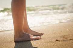 Walk on the Beach Royalty Free Stock Image