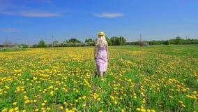 Walk on beautiful field of flowers. stock video