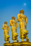 Walk behind of the Buddha. Stock Image