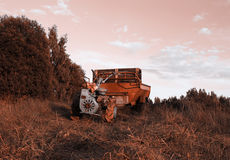 A walk-behind tractor on the field. Stock Photography