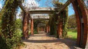 Walk in the Botanic Garden of Bogota Stock Photos