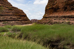 The walk into Catherdral Gorge, Purnululu, National Park. Surrounded each side by towering banded cliffs the walk during the Wet season can be difficult due to royalty free stock photos