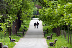 Walk in a city park Stock Photography