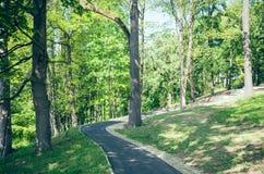 Walk in the city park Stock Photos