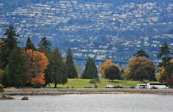 Walk in Coal Harbour enjoying Autumn Color, wildlife, Downtown, Vancouver, British Columbia Stock Images